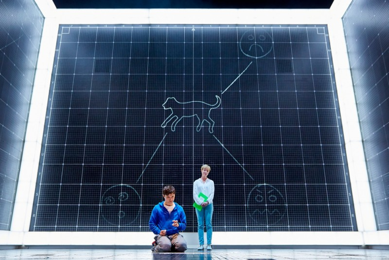 "Joshua Jenkins (Christopher) in ""The Curious Incident of the the Dog in the Night-Time"". Foto di BrinkhoffMögenberg"