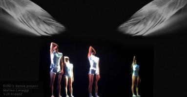 ALI PER VOLARE - coreografia Matteo Levaggi