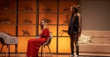 """TODI FESTIVAL, Stagione 2021 - """"The wasp – La vespa"""", regia Piergiorgio Piccoli. -di Pierluigi Pietricola"""